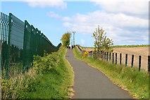 NO3601 : Path to Kennoway by Bill Kasman