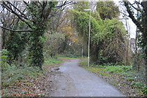 SU5901 : National Cycle Route 224 by N Chadwick