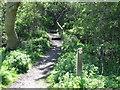 NZ3376 : Marker Post, Holywell Dene by Geoff Holland