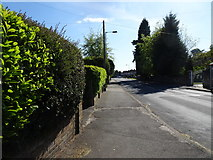 SO9095 : Mount Road View by Gordon Griffiths
