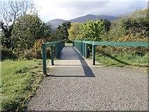 J3731 : Footbridge across the Shimna River in Islands Park, Newcastle by Eric Jones