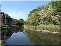TQ4781 : The lake at Crossway Park, Thamesmead by Marathon