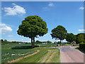 SU6385 : Country Cross Roads at Ipsden by Des Blenkinsopp
