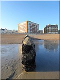 TQ2804 : Groyne, Hove Beach by Simon Carey