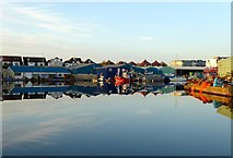 TQ2604 : Aldrington Basin by Simon Carey