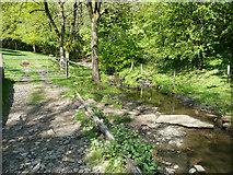 SE1226 : Lumb Brook upstream of Bird Holme Lane by Humphrey Bolton