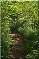 SX8870 : Path to Haccombe by Derek Harper