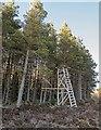 NH6433 : Deer Stand in Duntelchaig Wood by valenta