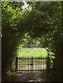 SX7956 : Entrance to sewage works, Bow Road by Derek Harper