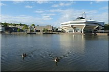 SE6250 : Canada Geese and Central Hall by DS Pugh