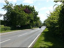 SK6735 : Nottingham Road, Cropwell Bishop by Alan Murray-Rust