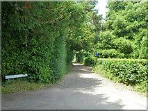 TR3051 : North Court Lane, Tilmanstone by Robin Webster