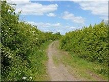 SK6736 : Public footpath near Cropwell Bishop by Alan Murray-Rust