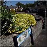 SZ0795 : Northbourne: Fletcher Close by Chris Downer