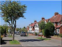 SO9096 : Westminster Avenue in Penn, Wolverhampton by Roger  Kidd
