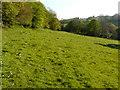 TR2043 : Meadow below unnamed wood by John Baker
