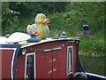ST7963 : Rainbow duck by Neil Owen