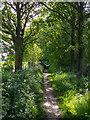TL5002 : Bridleway nr Mill Lane, Toot Hill by Roger Jones
