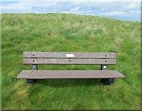 NT4999 : Bench seat by Bill Kasman