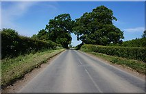 SE7576 : Habton Lane towards Newsham Lane by Ian S