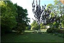 SE6250 : Quiet Place lawns by DS Pugh