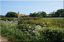 SE7484 : Fingerpost on Marton Road near Sinnington by Ian S