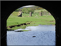 NT0136 : View through an archway, Wolfclyde Bridge by Alan O'Dowd