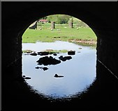 NT0136 : Reflection under an archway, Wolfclyde Bridge by Alan O'Dowd