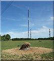 SP5610 : TV Transmitter at Beckley by Des Blenkinsopp