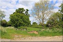 SU1091 : South Meadow Way by Wayland Smith