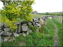 SE0028 : Boulder wall alongside Wadsworth Footpath 76, Chiserley by Humphrey Bolton