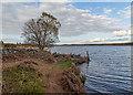 NH6234 : Boundary Wall Loch Ashie by valenta