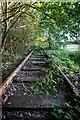 SJ8946 : Biddulph Valley Railway line by Brian Deegan