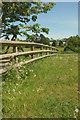 SX7962 : Fence at Dartington by Derek Harper