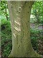 TF0720 : Ancient vandalism by Bob Harvey