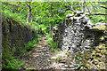 SD7723 : Cob Castle Road by Bill Boaden