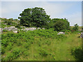 SD5579 : Path in Newbiggin Crags by Hugh Venables