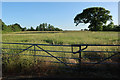 TL2976 : Field at the end of Warboys Road, Old Hurst by Hugh Venables