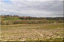 TQ6139 : Near Mouseden by N Chadwick