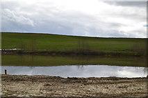 TQ6139 : New pond by N Chadwick
