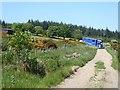 NY9755 : Farm road near Coalpitts by Oliver Dixon