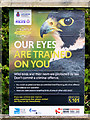 SD7908 : Our Eyes are Trained on You by David Dixon