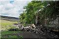 NY9834 : Rockfall into Bollihope Burn by Trevor Littlewood