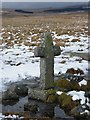 SX6470 : Old Wayside Cross by Mark Noddy Fenlon