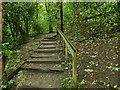 SE3137 : Steps in Gledhow Valley Woods by Stephen Craven
