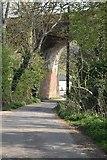 TQ5942 : Powdermill Viaduct by N Chadwick