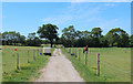 SD5738 : Track between Paddocks at Kidsnape by Chris Heaton