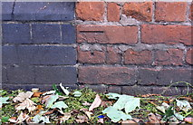 SK5802 : Benchmark on pier of wall of #247 Aylestone Road by Roger Templeman
