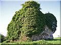 R9538 : Castles of Munster: Kilfeakle, Tipperary (3) by Garry Dickinson