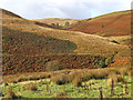 SN7453 : Doethie moorland near Llethr Llwyd, Ceredigion by Roger  Kidd